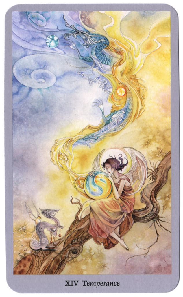 Shadowscapes Tarotkaart Matigheid