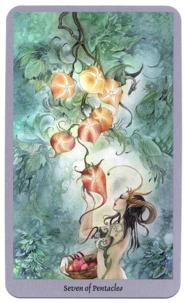 Shadowscapes Tarot Pentakels Zeven