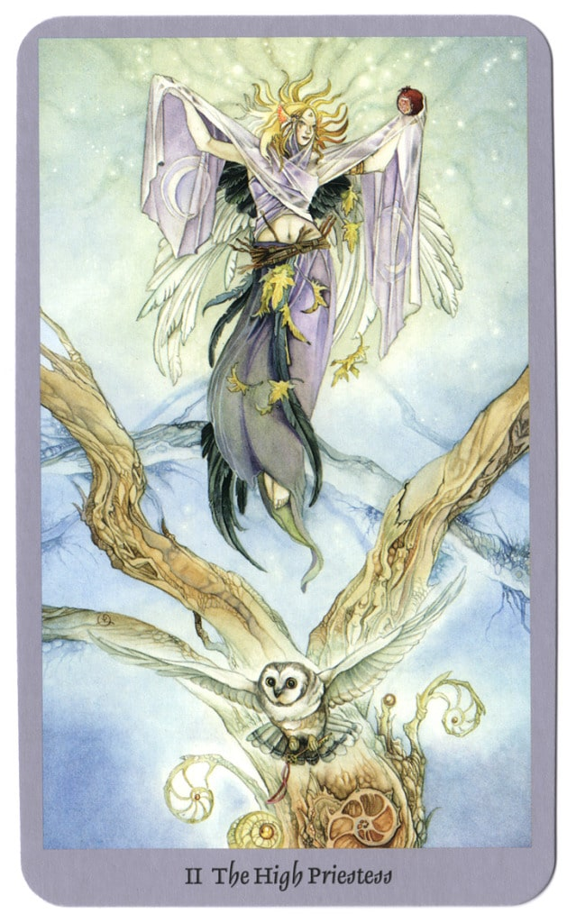 tarot shadowscapes hogepriesteres