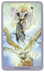 Magische shadowscapes tarot hogepriesteres