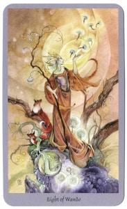 staven 8 shadowscapes en pluizige paardenbloemen tarotkaart