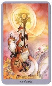 Shadowscapes tarotkaart staven aas met vossenkracht