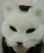 dolfje weerwolfje masker