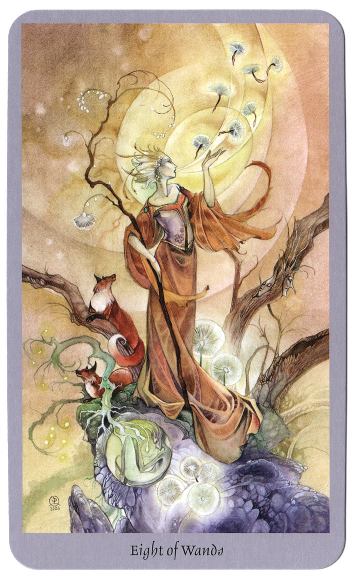 shadowscapes tarot staven 8