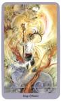 Shadowscapes Tarot - Koning van Staven