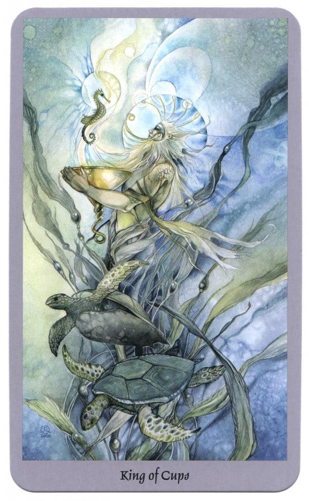 Koning van kelken shadowscapes tarotkaart