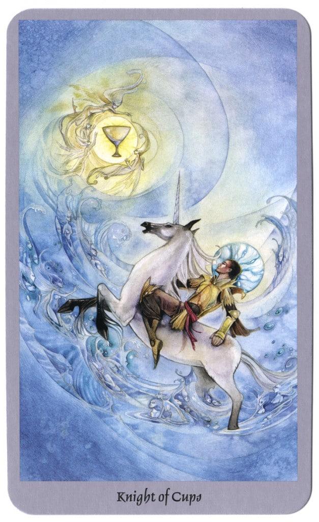 tarotkaart ridder kelken shadowsacpes tarot