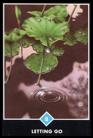 osho zen tarot loslaten water 8