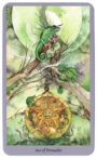 Shadowscapes Tarot - Pentakels Aas
