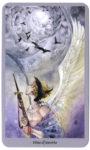 Shadowscapes Tarot  -  Zwaarden Negen