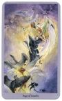 Shadowscapes Tarot - Page van Zwaarden