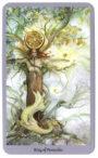 Shadowscapes Tarot Koning van Pentakels