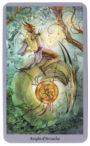 Shadowscapes Tarot - Ridder van Pentakels