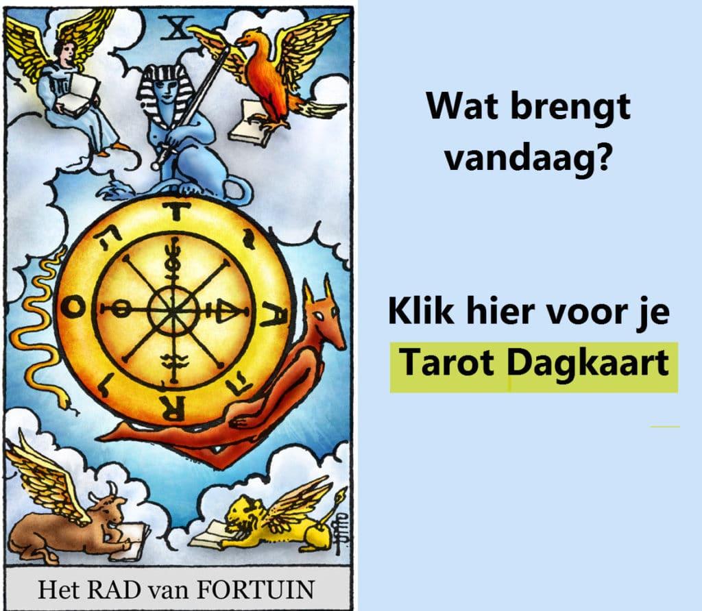 Online Tarot kaart trekken dagkaart trekken