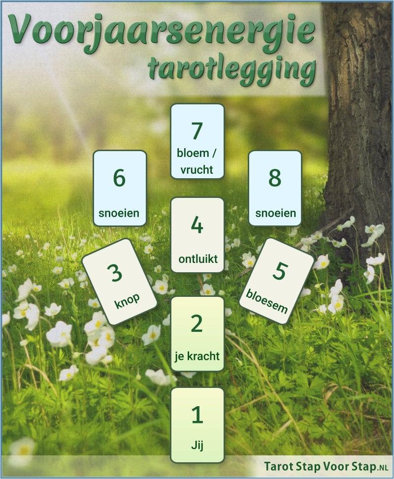 Voorjaarsenergie - tarotlegging