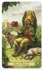 Everyday Witch Tarot – charmant en bruikbaar