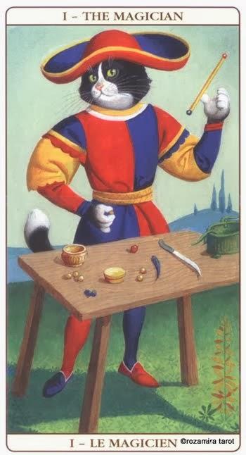 marseille cat tarot magiër