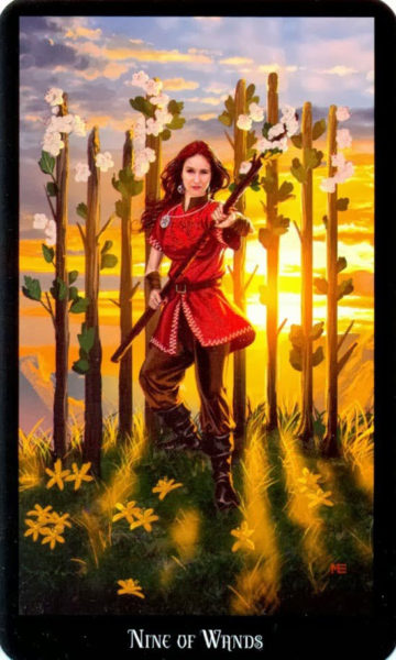 Dugan witches tarot staven 9