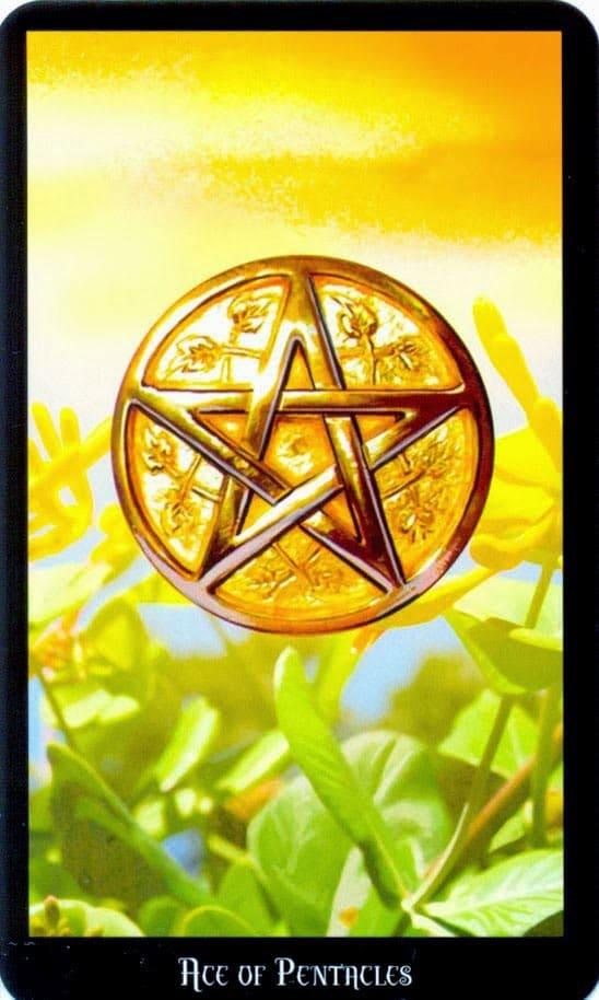 Dugan witches tarot Pentakels Aas