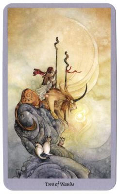 Tarotkaart trekken shadowscapes tarot staven 2